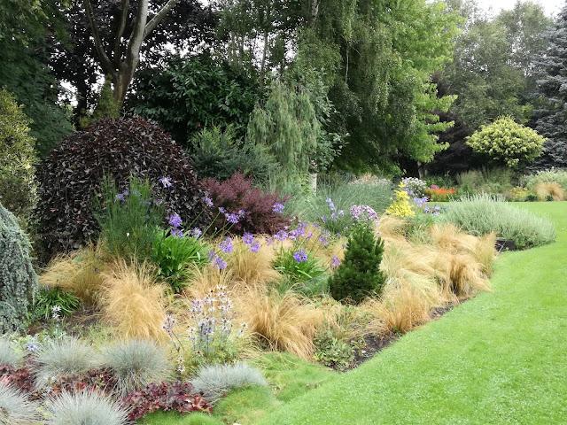 English gardens, ogród angielski
