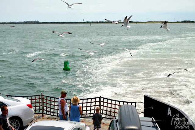 Head to the Hatteras Inlet Ferry docks to catch a ride (car and all) to the southernmost island of the Outer Banks, Ocracoke Island. The ferry ride itself takes around 2 hours.