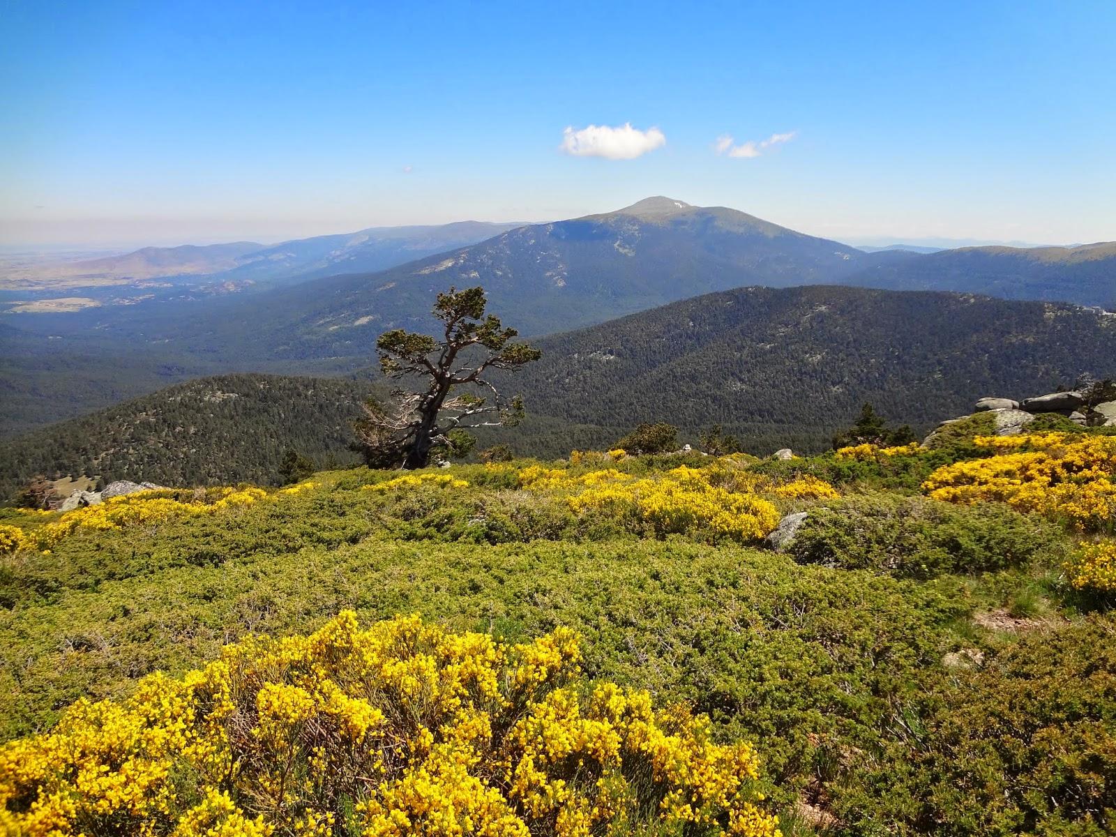 Vistas desde Siete Picos