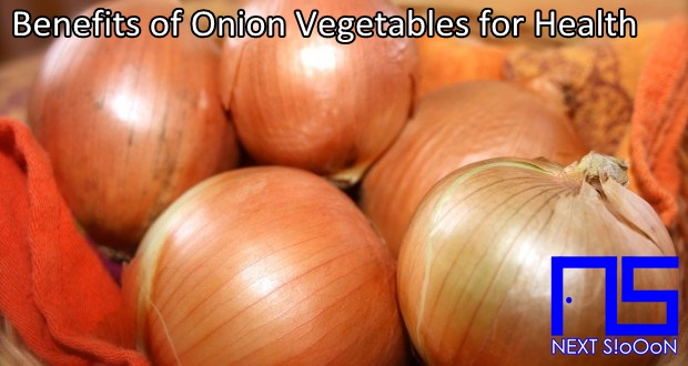 Onion Vegetables, What Is Onion Vegetables, Understanding Onion Vegetables, Explanation of Onion Vegetables, Benefits of Onion Vegetables for Health, Benefits of Onion Vegetables for the Body, Nutrition of Onion Vegetables, Vitamins for Onion Vegetables, Vitamins and Onion Vegetables Nutrition for Body Health, Get a Healthy Body with Onion Vegetables, Information about Onion Vegetables, Complete Info about Onion Vegetables, Information About Onion Vegetables, How the Nutrition of Vitamin Onion Vegetables is, What are the Benefits of Onion Vegetables for the Body, What are the Benefits of Onion Vegetables for Health, the Benefits of Onion Vegetables for Humans, the Nutrition Content of Onion Vegetables provides many benefits for body health.