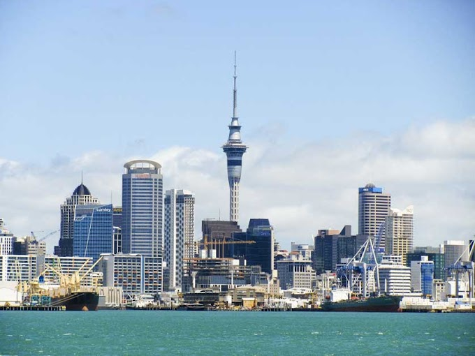 Five Largest Cities in New Zealand
