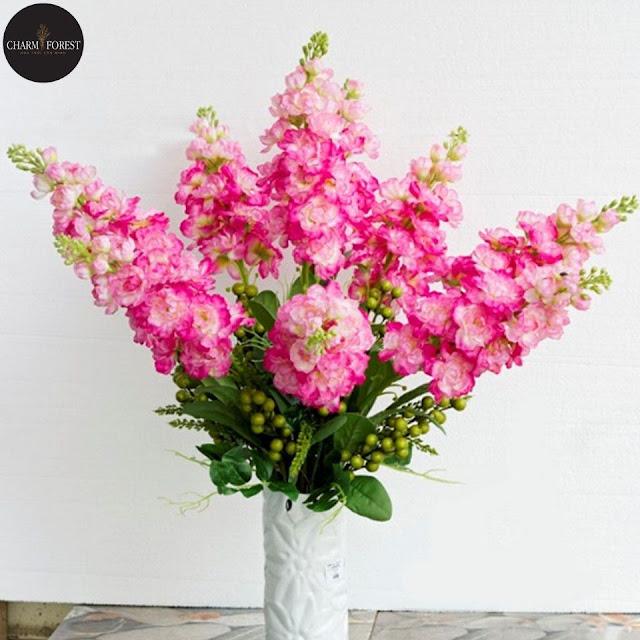 Hoa phi yến