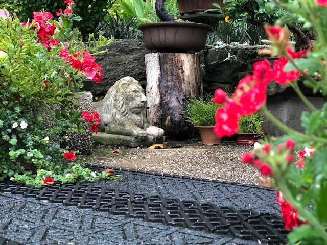Scene from a Suburban Small Plot Home Blog. Nature-loving couple garden, create bird, butterfly, bullfrog friendly backyard environment.