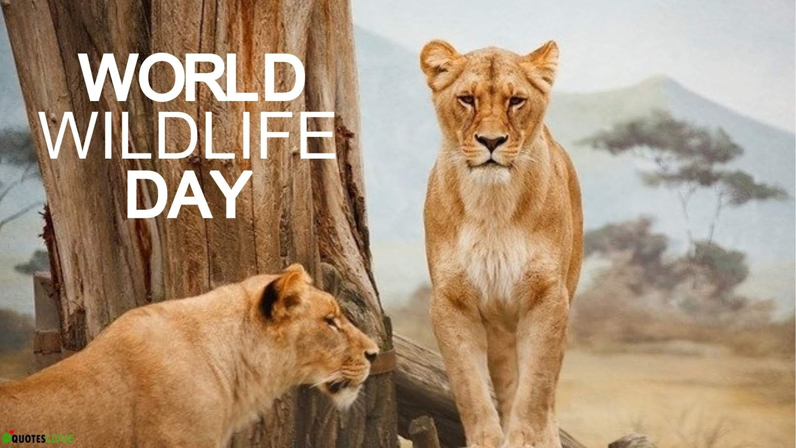 World Wildlife Day Quotes, Slogans, Wishes, Themes, Hashtags, Images, Posters, Drawing, Logo