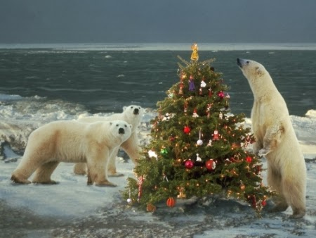 Mr. Polar Bear and his family decorate their Christmas tree in the North Pole.