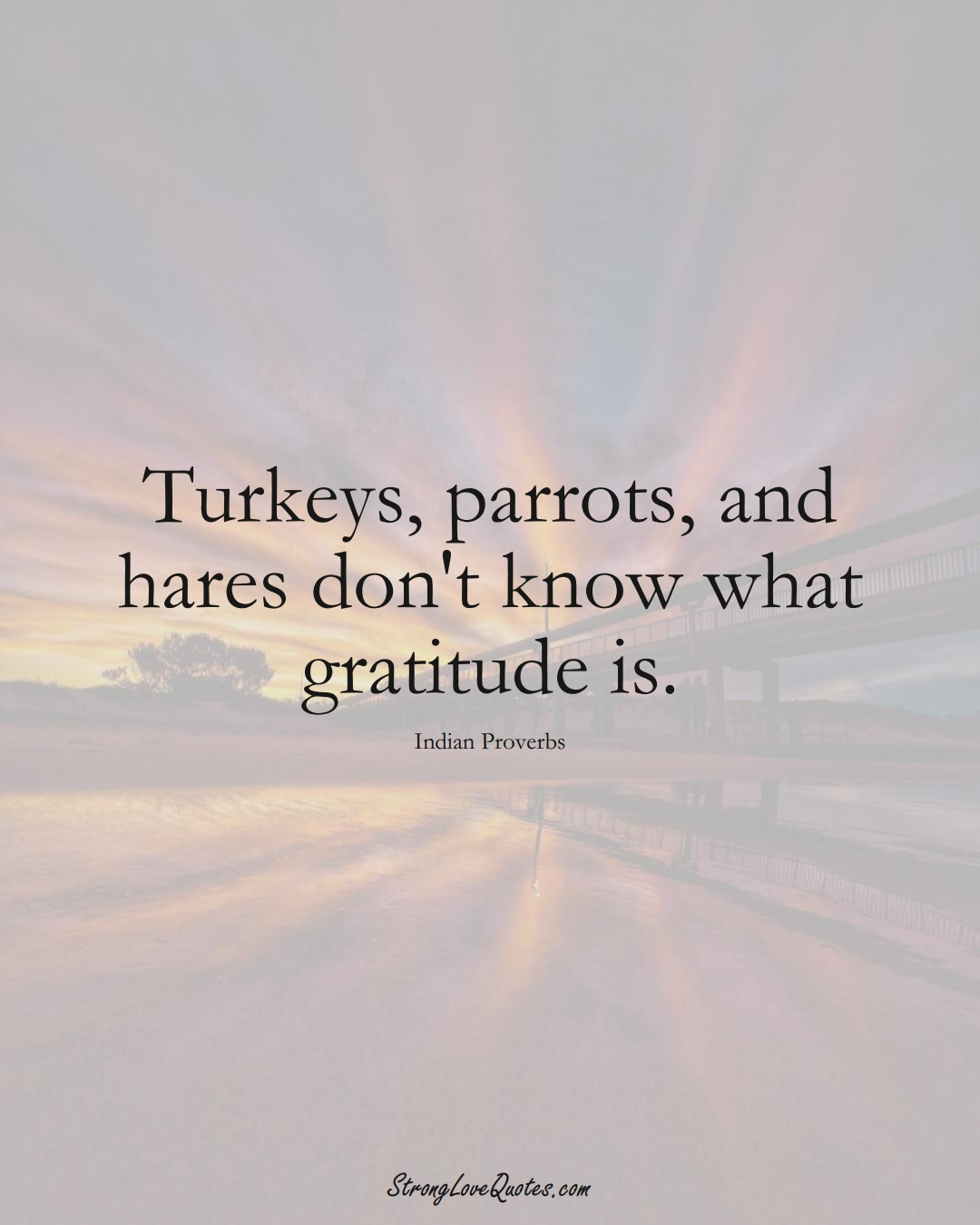 Turkeys, parrots, and hares don't know what gratitude is. (Indian Sayings);  #AsianSayings