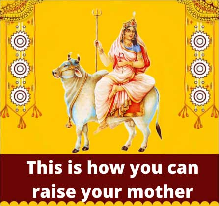 Navratri starts this time, Ambe has come on mother horse