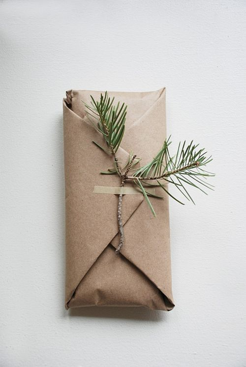 simple eco-friendly wrapping with pine branch