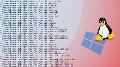 malware para window