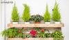 Terbaru! Percantik Rumah Anda Dengan Desain Rak Bunga