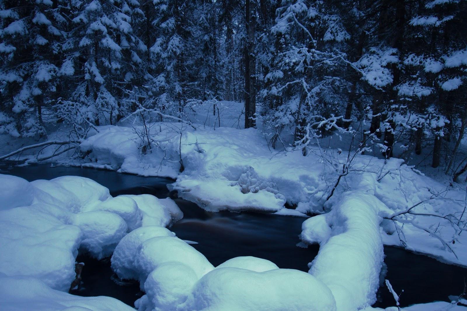 Koirajoki Talviahon nuotiopaikan vieressä