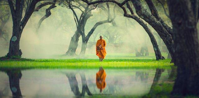 Parábola budista para ignorar a las personas tóxicas