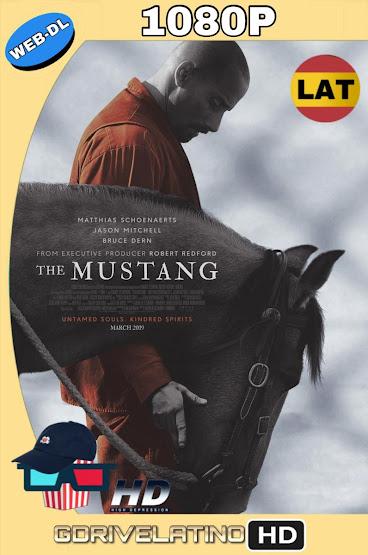 The Mustang (2019) WEB-DL 1080p Latino-Ingles MKV
