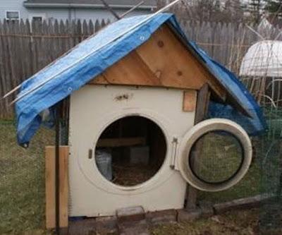 Une niche faite avec une machine à laver de récupération.