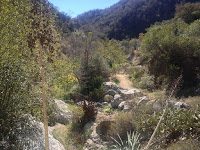 Heading south on Fish Canyon Trail toward Old Cheezer Mine, Angeles National Forest