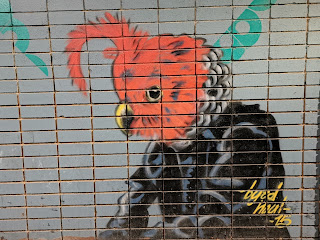 Canberra Street Art | Cook mural by Byrd