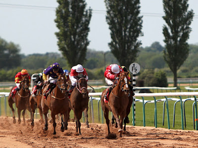 Southwell racecourse tips