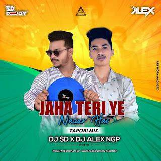 JAHAN TERI YE NAZAR HAI - TAPORI REMIX - DJ SD X DJ ALEX NGP
