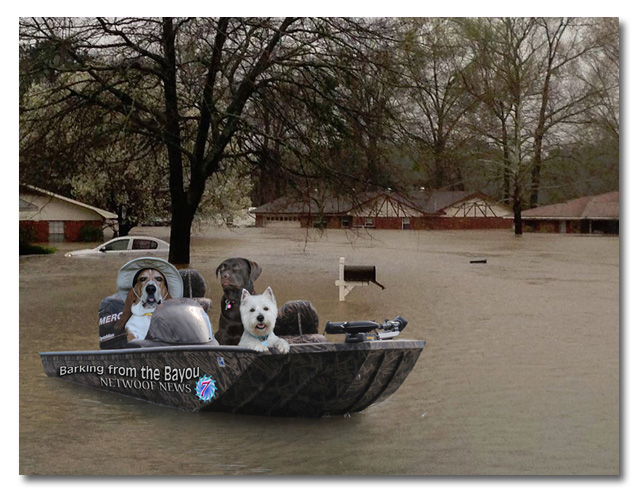 BFTB News/Weather team reporting in flooded Bossier parish in boat