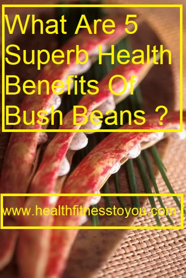 What Are 5 Superb Health Benefits Of Bush Beans ?