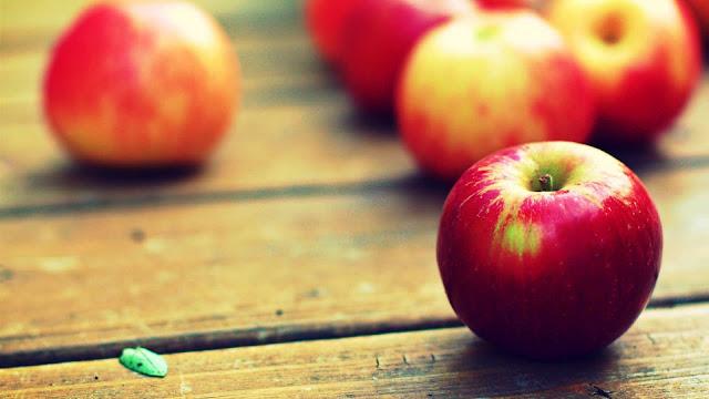 wallpaper gambar buah apel merah