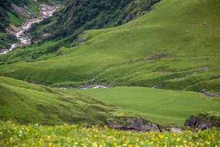 The verdant views and the sheep grazing on the slopes.