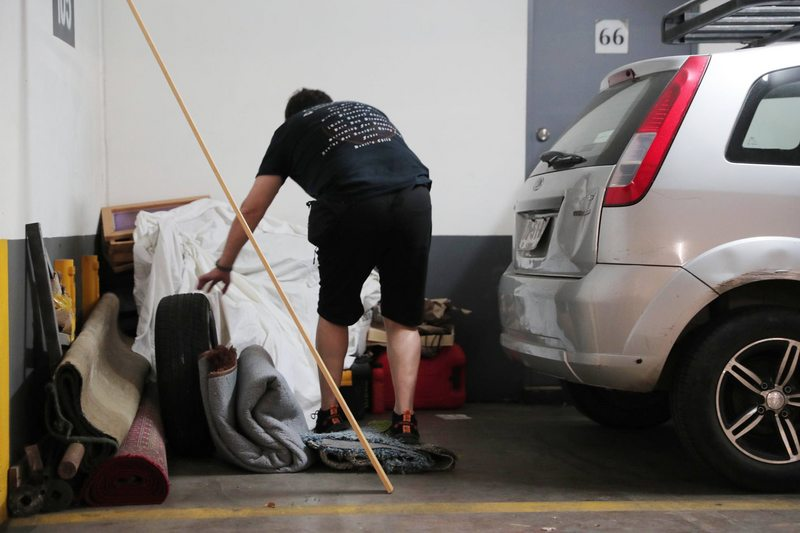Cachureos en el estacionamiento