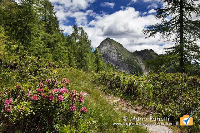 Sentiero che dalla bocchetta di Ruggia porta all'alpe i Motti