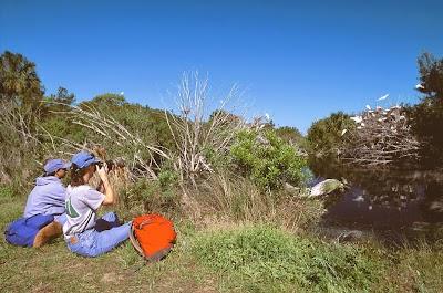 Guest post: 5 Best Birding Spots in the U.S.