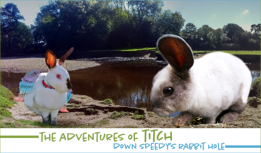 Adventures of Titch down Speedy's Rabbit Hole