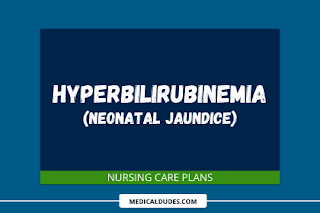 Hyperbilirubinemia care plans
