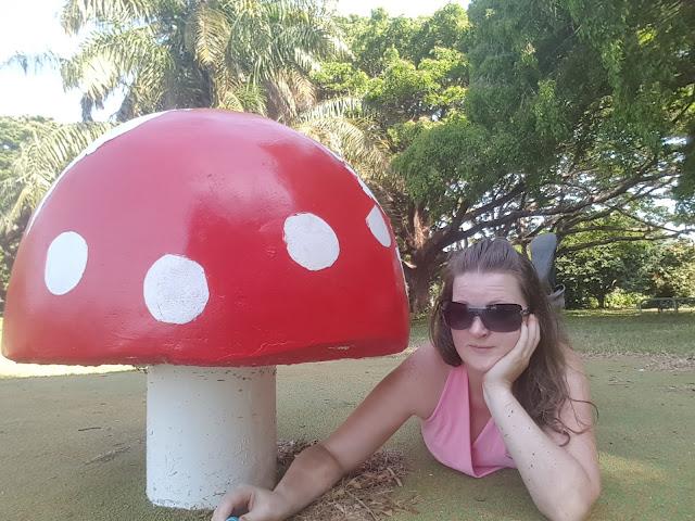 Northern Territory BIG Things | BIG Toad Stool