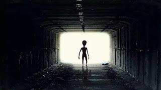 Alien in spacecraft