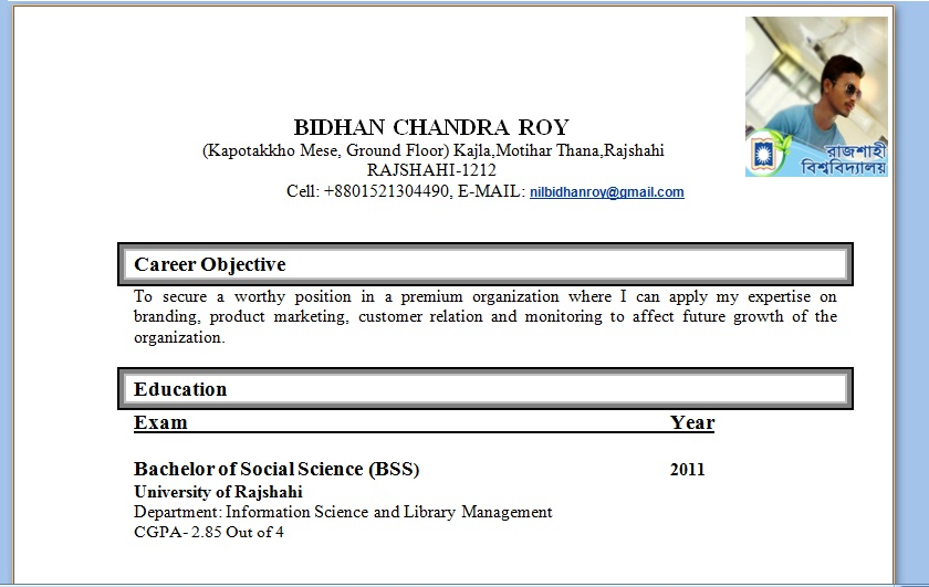 Curriculum Vitae/CV/ Basic Resume Writing Rules/elements