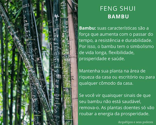 Bambu e a prosperidade