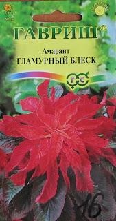 Замечательное декоративное растение амарант