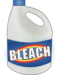 Does Bleach Kill Mold