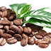 Coffee Been PNG