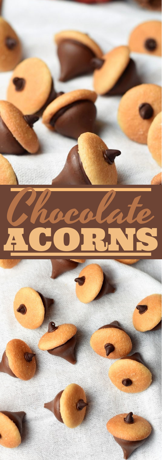 Chocolate Acorns #chocolate #desserts