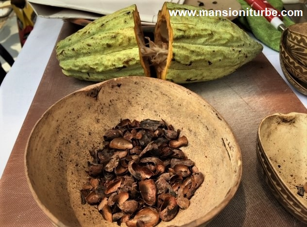 Cacao y Cascara de Cacao