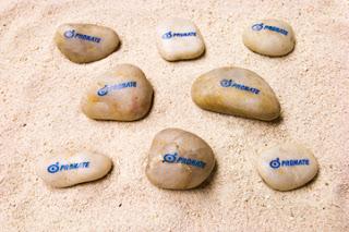 石に印刷(プロネートロゴ)
