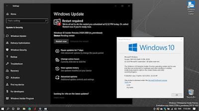 Windows 10 Build 21301