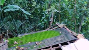 Rumah Seorang Janda Roboh Saat Di Terjang Hujan Angin Aparatur Pemerintahan Setempat Tutup Mata