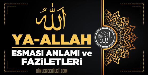 Allah'ın 99 ism-i şerifi Esmaül Hüsnasından olan Ya ALLAH ne demek, anlamı, zikri, fazileti nedir? Ya Allah Ebced değeri, zikir adedi ve günü nedir?