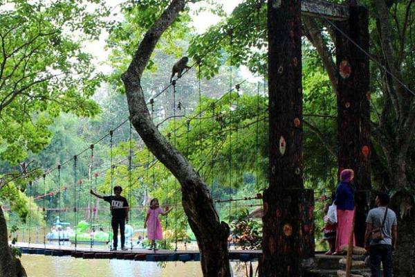 Keindahan Hutan Wisata Punti Kayu Sumatra Selatan