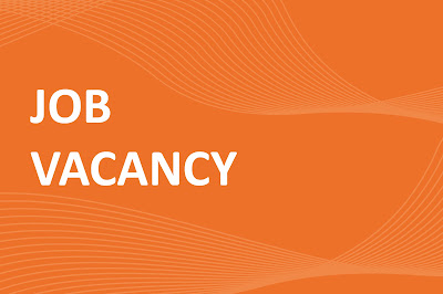 dealdey job vacancy for software developer