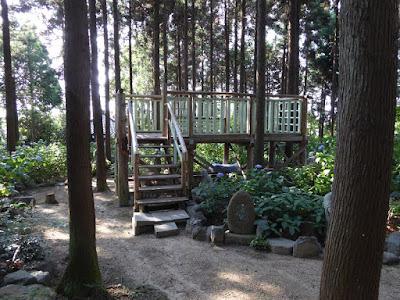 長尾の寺・正俊寺の紫陽花庭園 展望所