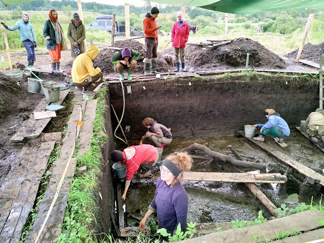 Neolithic pile house discovered in North-Western Russia