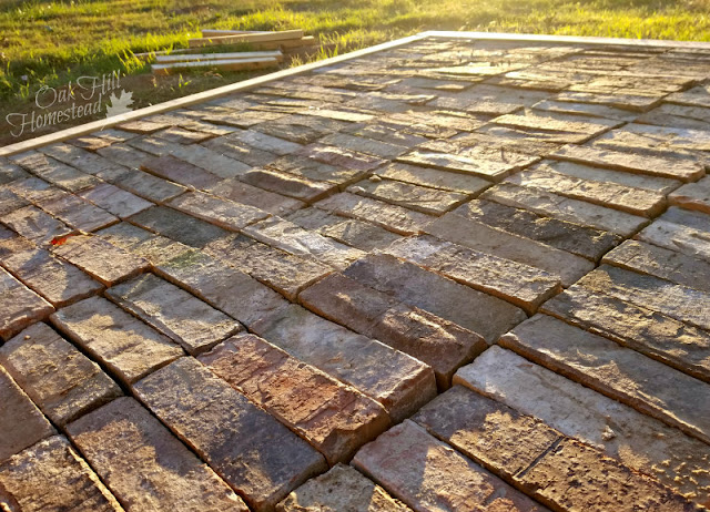 We used bricks for the floor of our prefab greenhouse.