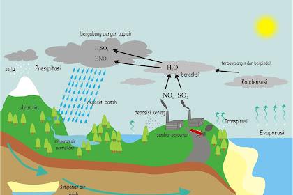 Penyebab Terjadinya Hujan Asam dan Solusinya